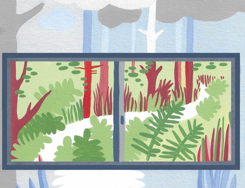 illustration gouache numérique forêt feuillage écrivain
